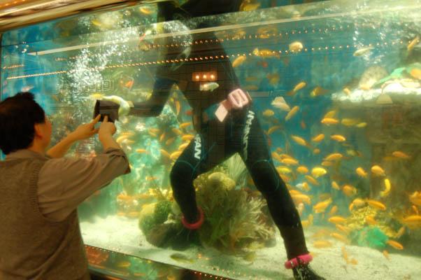 fishtank_diver.jpg