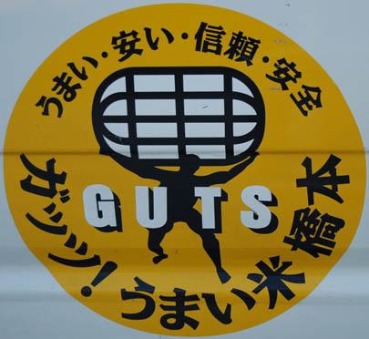 guts.JPG