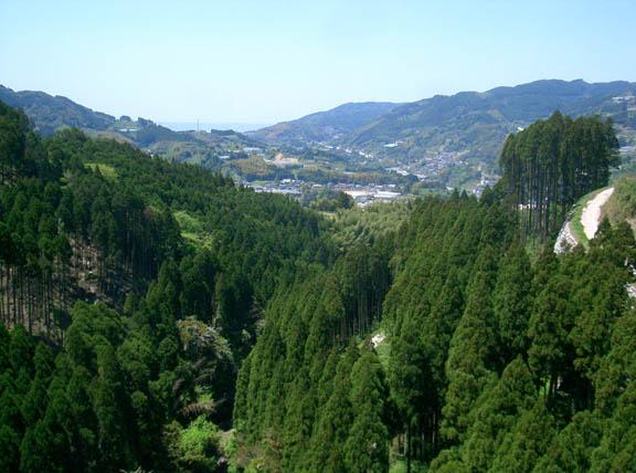 nanayamamura.jpg