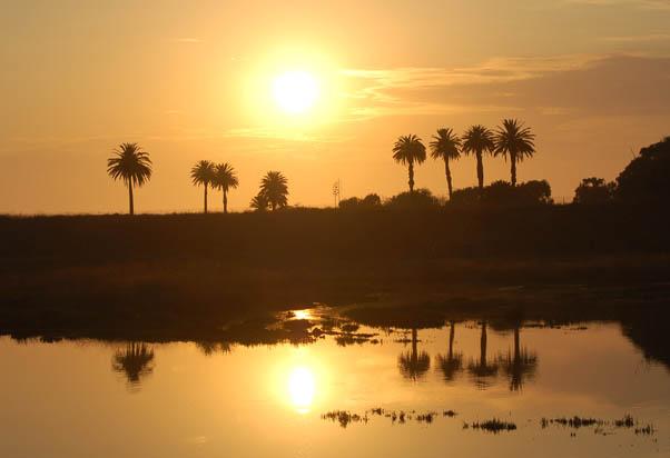bolsa_chica_sunset.JPG
