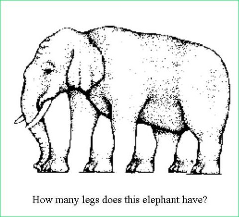 elephant-illusion.jpg