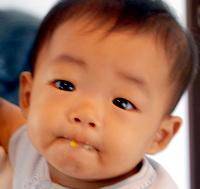 20081201shamoji-man0007.jpg