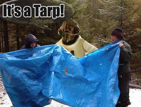 its-a-tarp.jpg