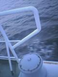 1088652274ferry-railing_001.jpg